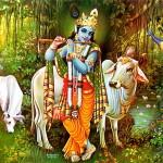 Sous le signe de Krishna. Donner un sens à l'amour